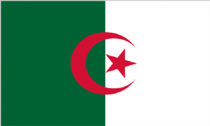 Algeria Large Country Flag - 3' x 2'.